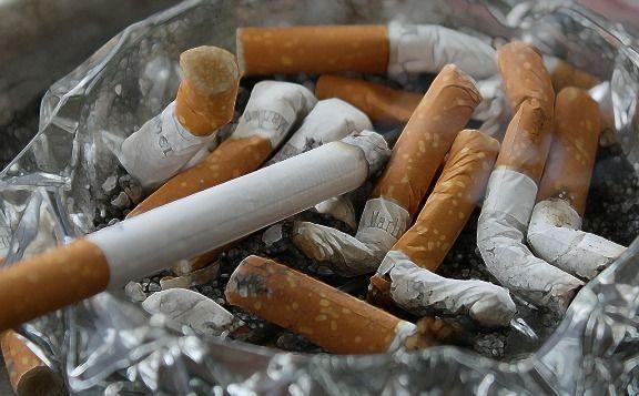 Fumaresmaloparalavista