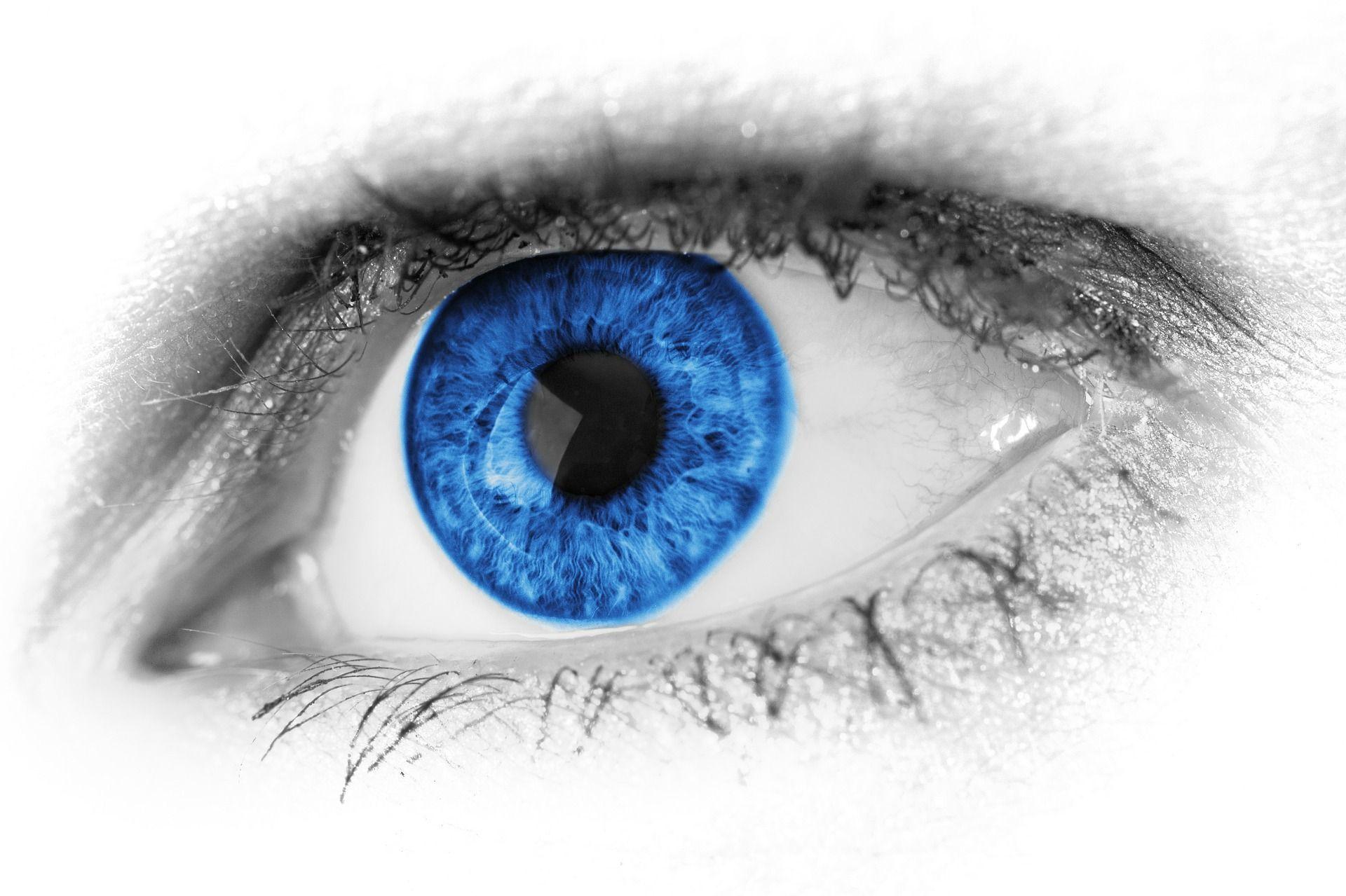 sabas que ucen el fondoud todos tenemos los ojos azules